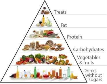 Healthy Eating | XLS Medical